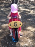 Youngest granddaughter, Amelia, 3, has the right idea...hold on tight, head down, pedal hard, and have fun. With a heart filled with love.