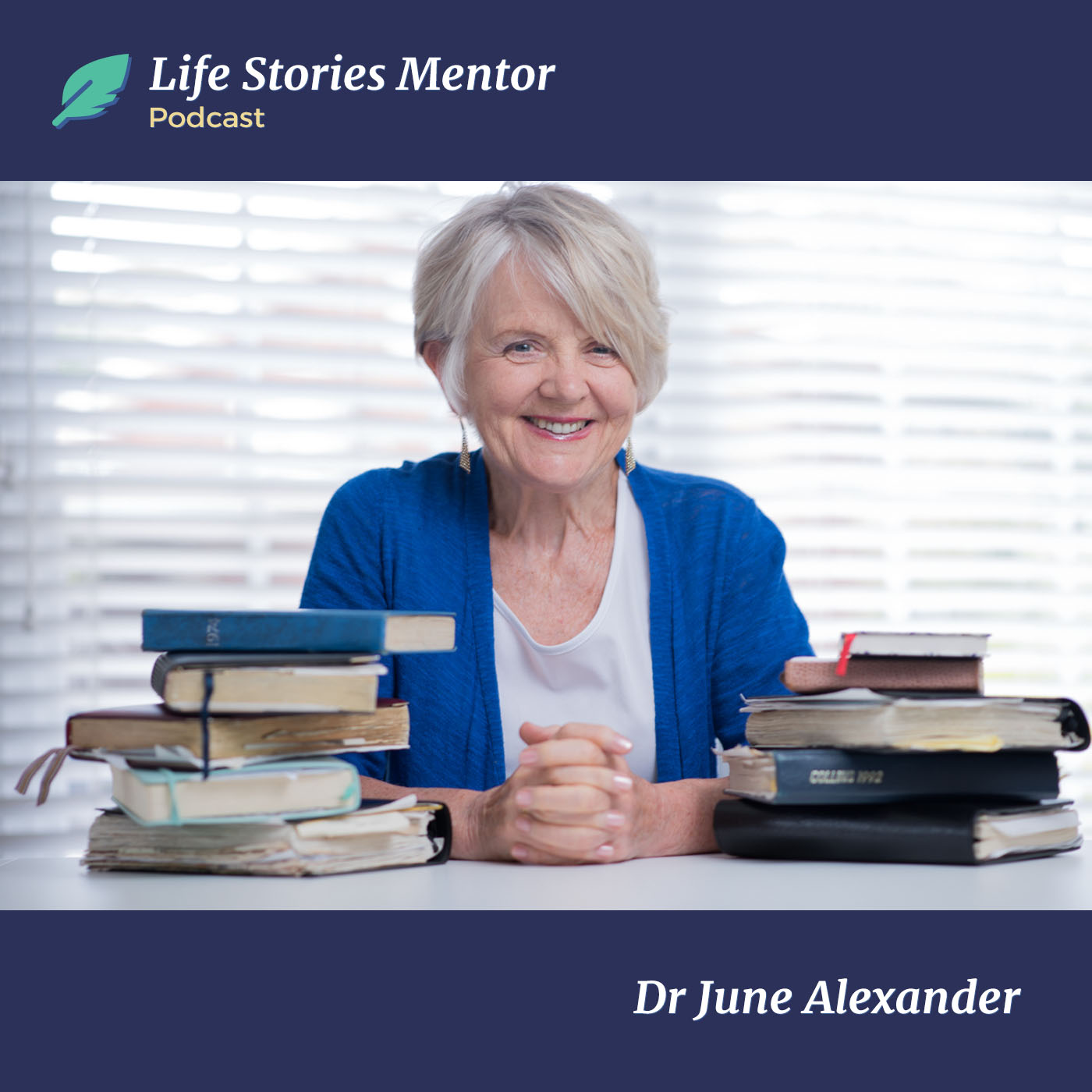 Life Stories Mentor